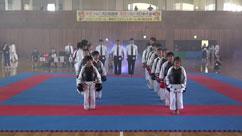 第12回日本拳法愛媛県選手権大会