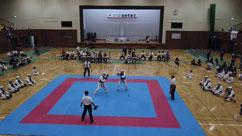 第72回国民体育大会デモンストレーションスポーツ日本拳法